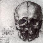 Леонардо да Винчи Анатомический рисунок черепа Около 1490 19 x 13,7 см Сангина, перо, по наброску черным мелом Из собрания Ее величества королевы Елизаветы II
