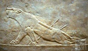 Раненая львица. Рельеф из дворца Ашшурбанипала в Ниневии. Алебастр. Середина 7 в. до н. э. Лондон. Британский музей
