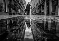 Фотоискусство — программа, вопросы