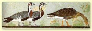 .«Медумские гуси». Фрагмент росписи с изображением гусей из гробницы зодчего Нефермаат, и его жены Итет