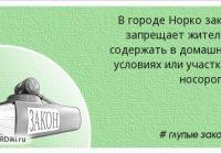 Нормативный правовой акт как основной источник права России