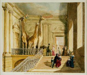 Лестница в Монтегю-хаус. Акварель Г. Шарфа. 1845 г