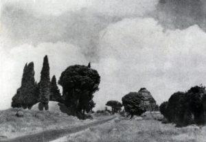 Аппиева дорога (Виа Аппиа). Начата постройкой в 312 г. до н. э.