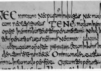 Codex Ragyntrudis, тексты Отцов Церкви (VIII в., Луксёй \ Библиотека собора Фульды,Гессен, Германия, Codex Bonifatianus II)