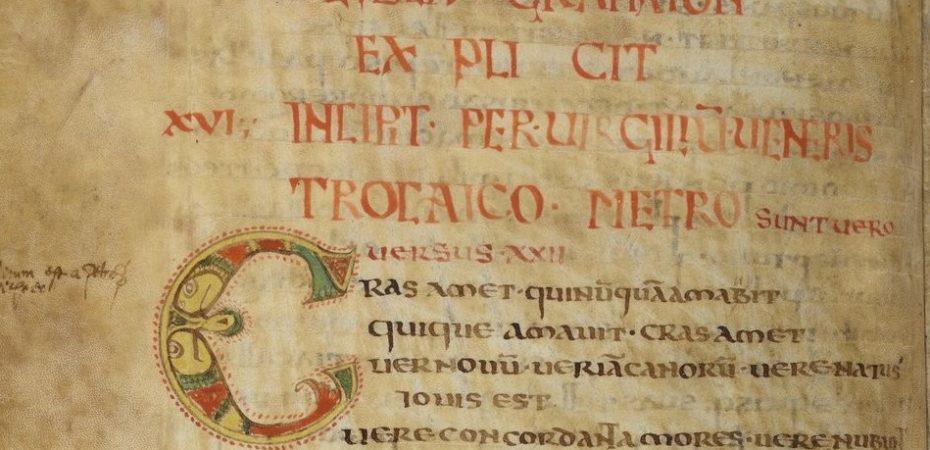 Anthologia latina (2 пол. VIII в., Италия / BMF, lat.10318)