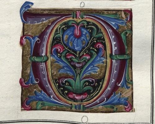 Альбом средневековых инициалов (1501-1525, Италия / Национальная библиотека Польши, Rps BOZ 192)
